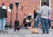 Some of the dogs even got into the music.